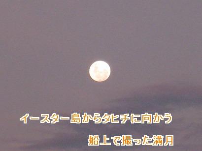 IMG_2889.jpg