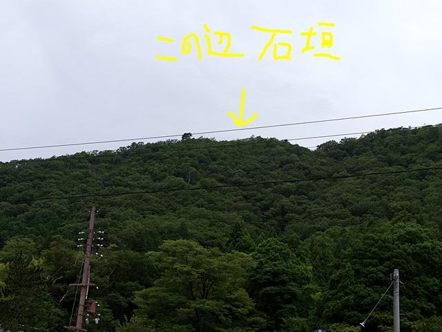 140802_10.jpg