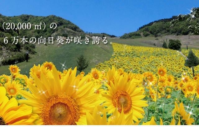 140811_05.jpg