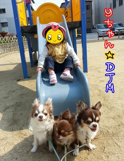 20140316_140813.jpg
