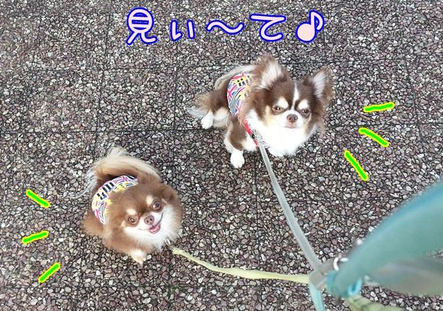 20140714_060806.jpg