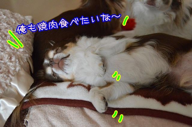 DSC_3133.jpg