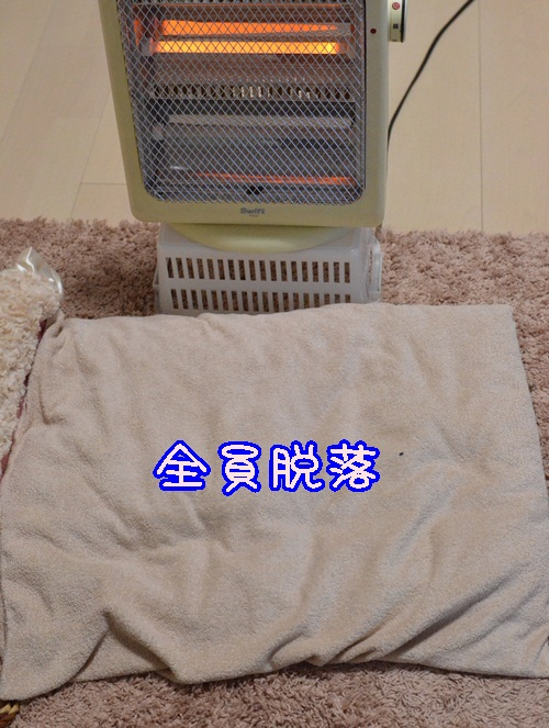 DSC_3570.jpg