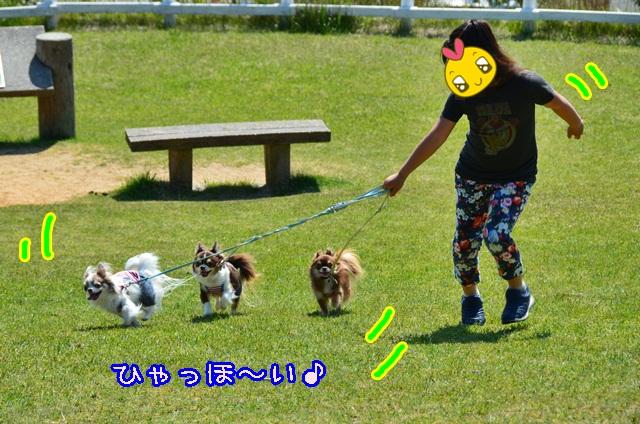 DSC_3957.jpg