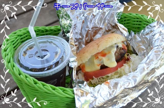 DSC_4713_201406251857205d8.jpg