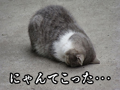 0606_image_004.jpg