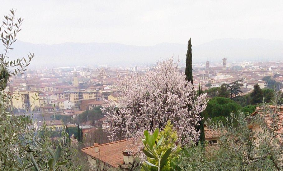 Pratoの丘から