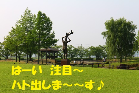 IMG_1569.jpg