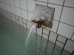 ライオン湯口