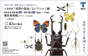 虫と花DM2-01修正2