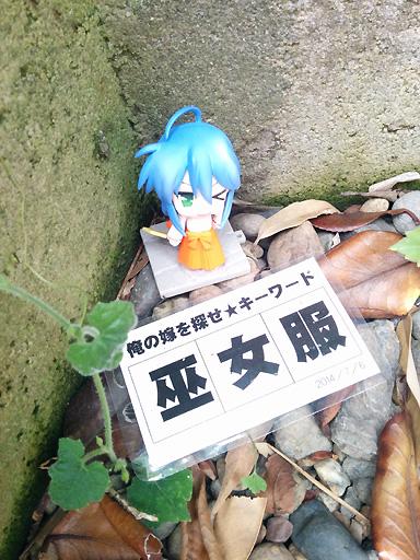 washimiya_06jul201_05.jpg