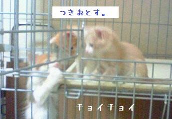 140602_b.jpg