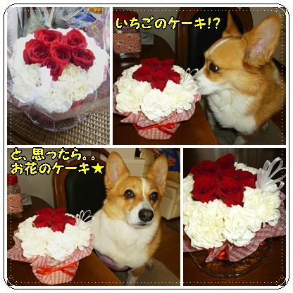 お花のケーキ1
