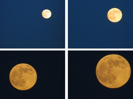月 (450x338)