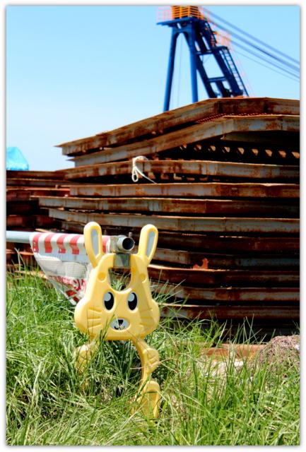 青森県 八戸市 海 港 八戸港 工業港 国際貿易港 うみねこ 写真