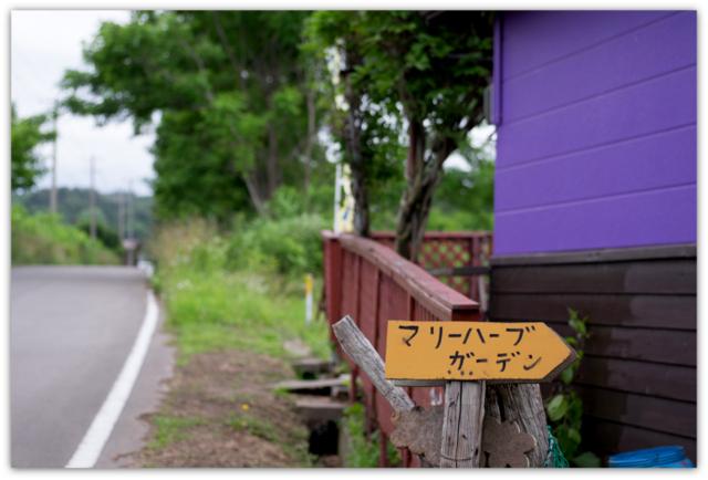 青森県 鰺ヶ沢町 ラベンダー マリーハーブガーデン 観光