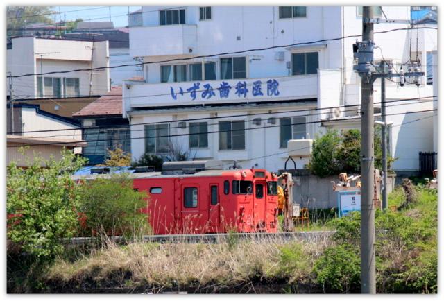 ねこ 猫 ネコ CAT 写真 八戸 電車