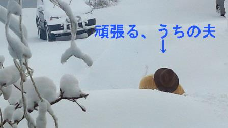 雪かき(2)