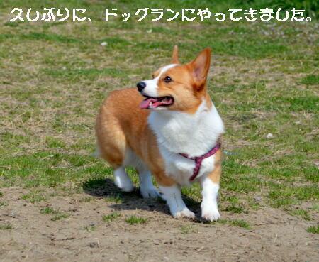 2014032401.jpg