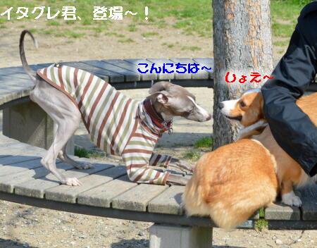 2014032609.jpg