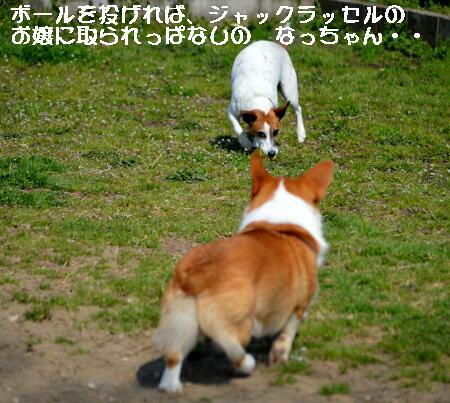 2014032615.jpg