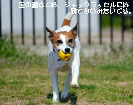 2014032616.jpg