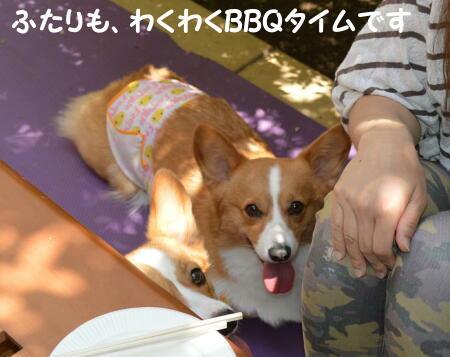 2014061502.jpg