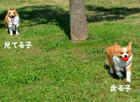 2014091410.jpg