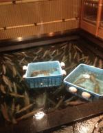 20140503福岡6_convert_20140526183507