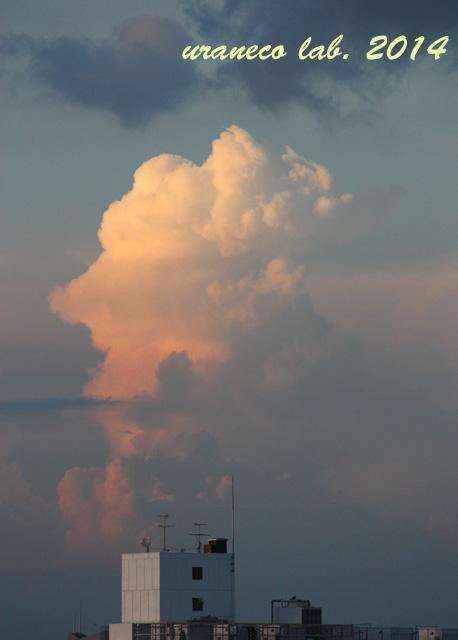 7月3日積乱雲2