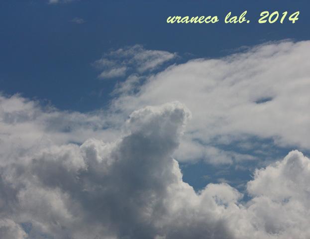 7月3日積乱雲3