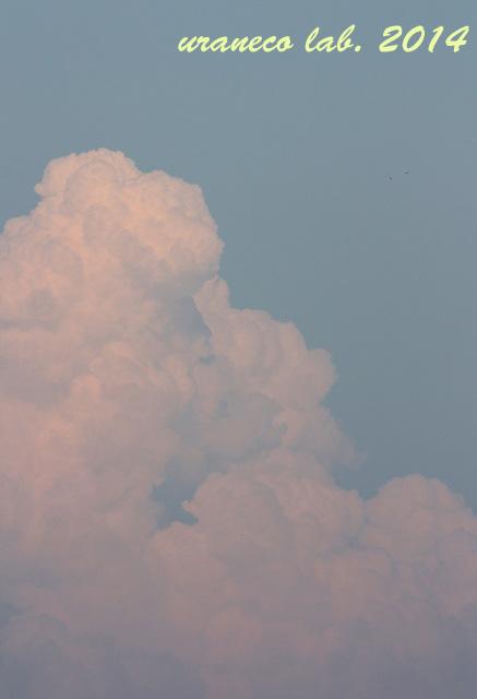 7月3日積乱雲6