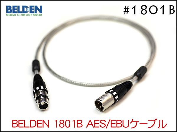 1801B-001.jpg