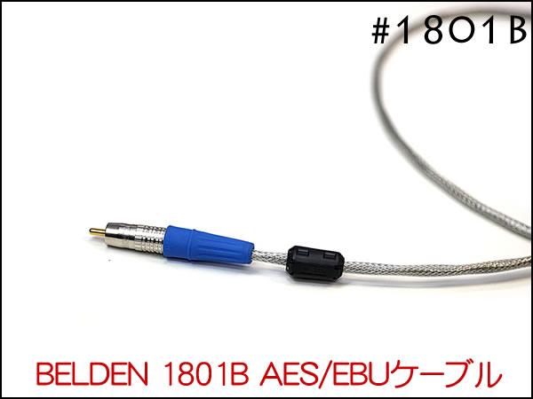 1801B-010.jpg