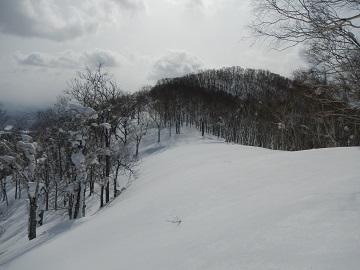 DSCN4422.jpg