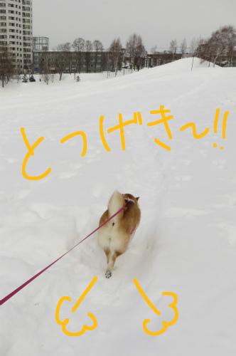 突撃!坂の公園!!