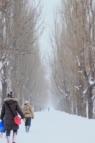 カナル散歩