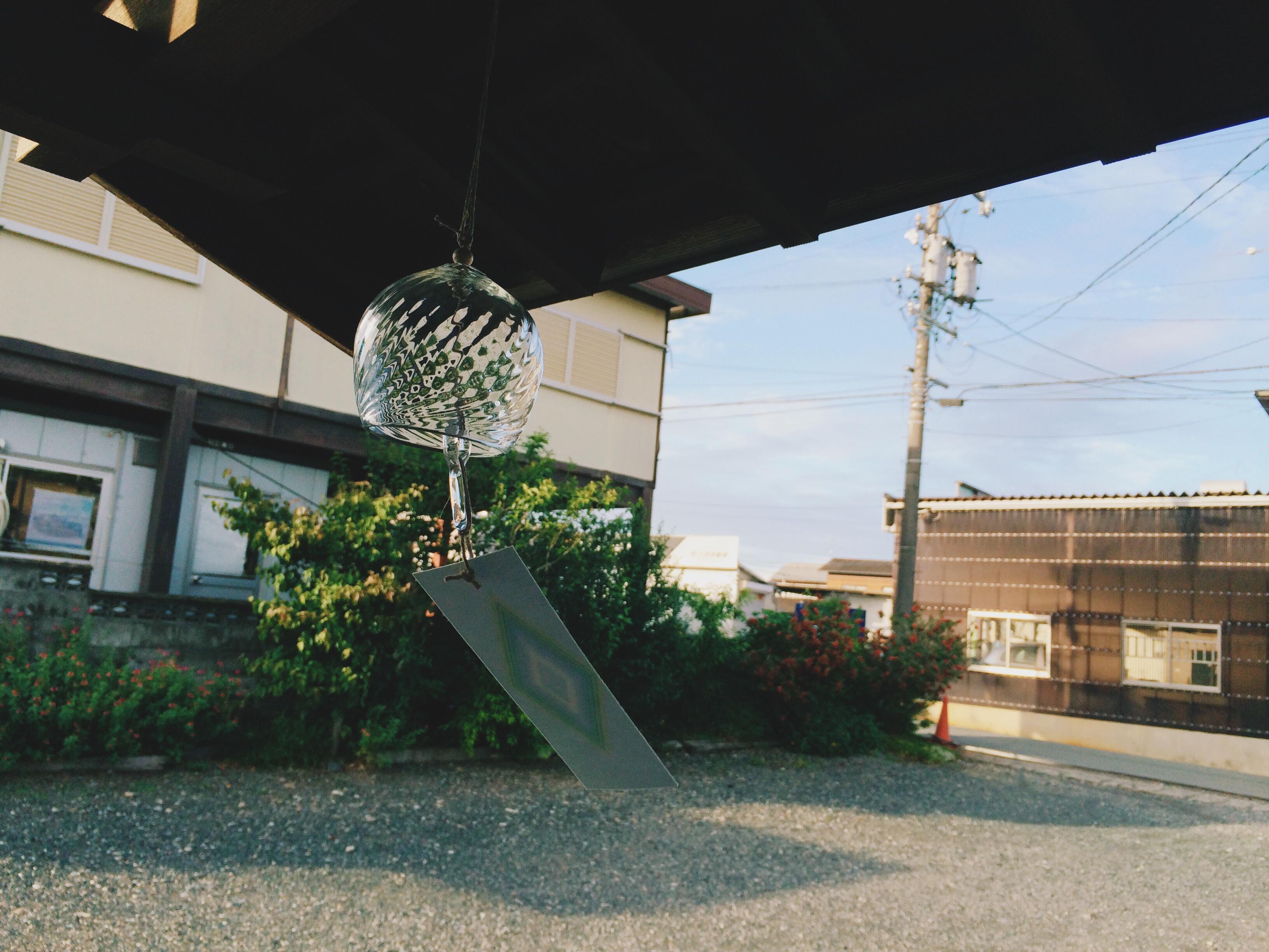 IMG_6611[1]
