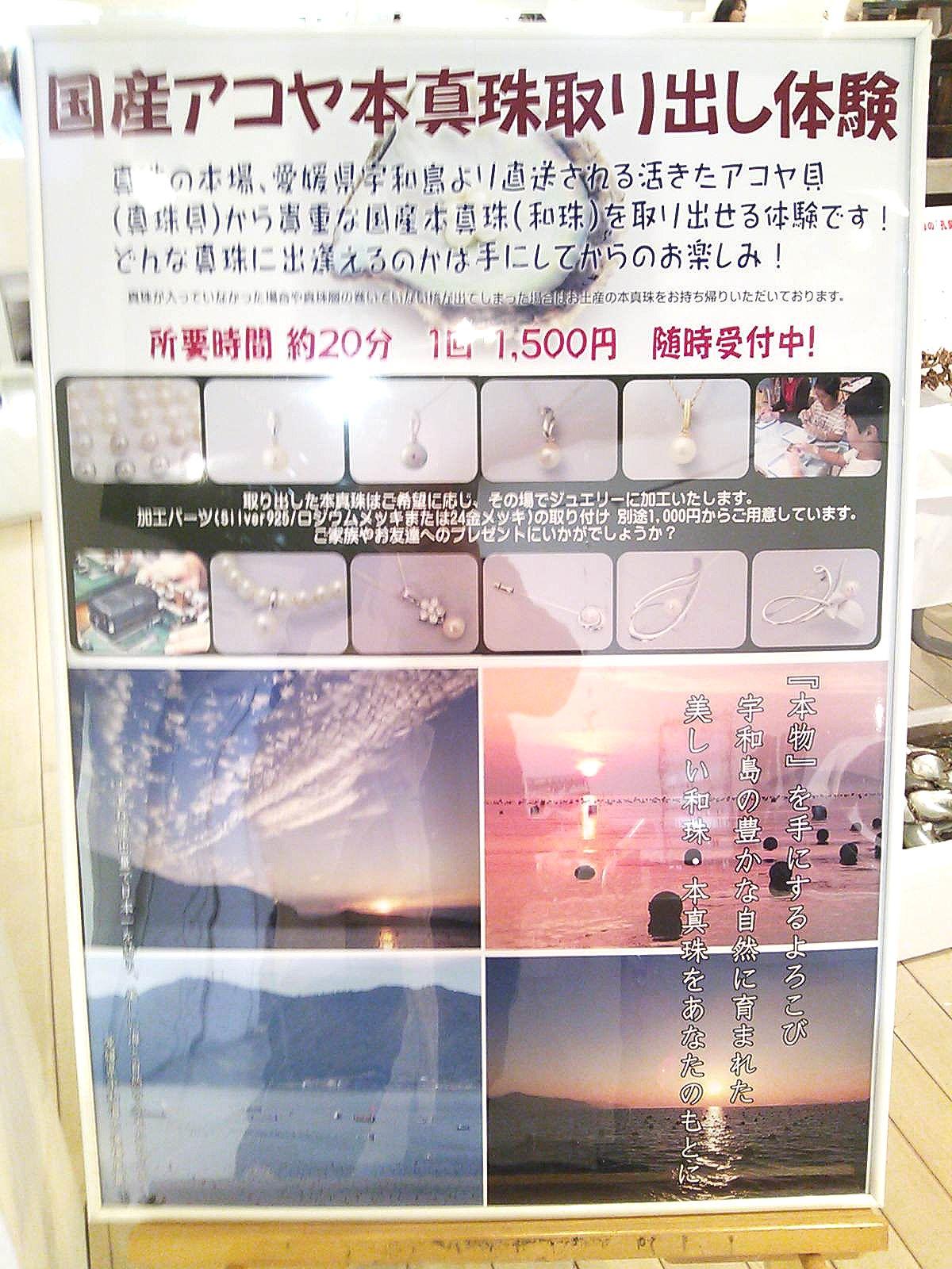 Irukaisi_0418_04.jpg