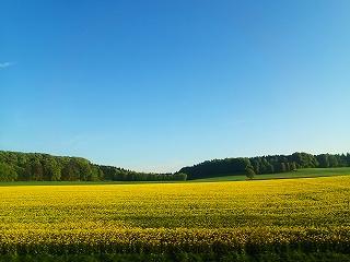 フュッセンへの車窓20140518