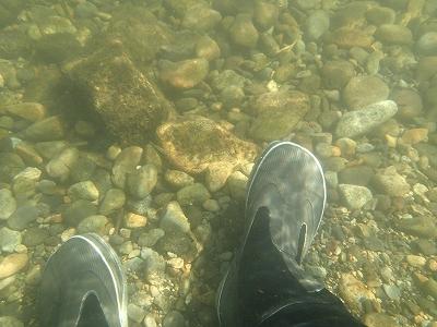 水中の写真20140807