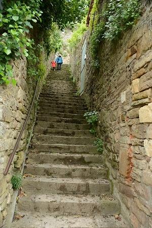 コルド階段20140919