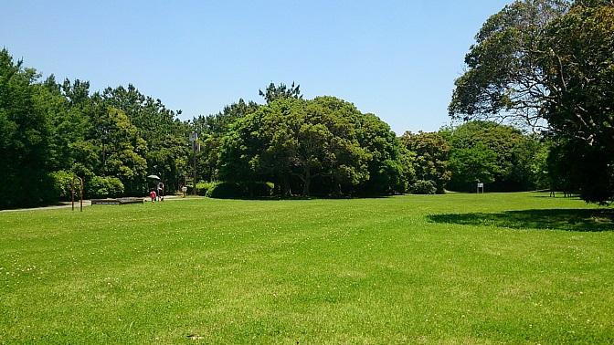 富津ふれあい公園