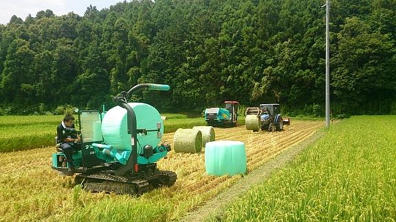田の中で農機具の運動会みたい