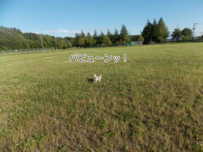 201400608_14.jpg