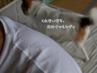 2014006708_5.jpg