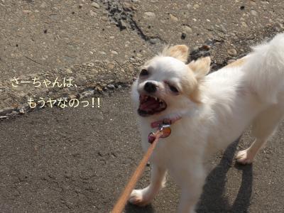 2014006709_5.jpg