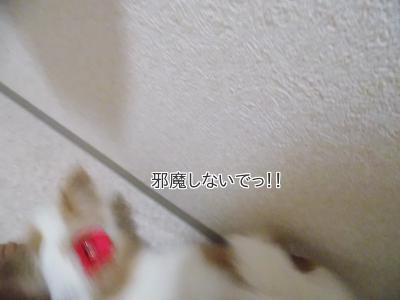 2014006716_3.jpg