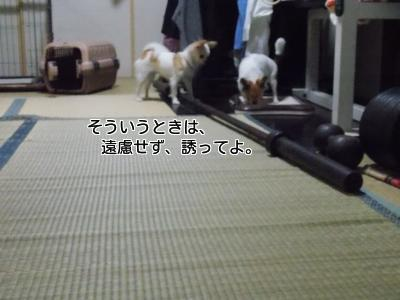 20140222_18.jpg