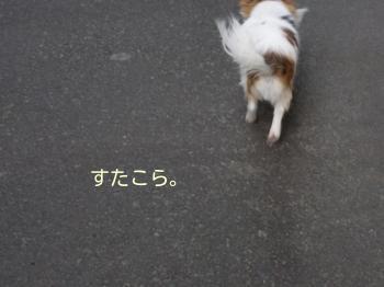 20140317_2.jpg